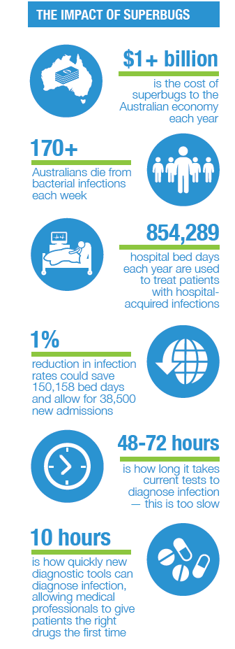 Impact of Superbugs in Australia Infographics